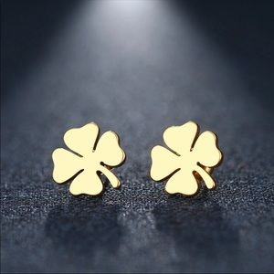 LUCK Stainless Steel Earrings